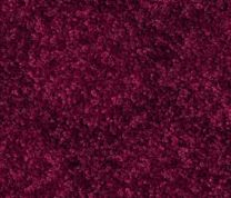 Maroon Wall to Wall Carpet
