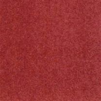 Red Wall to Wall Carpet