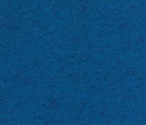Blue Wall to Wall Carpet