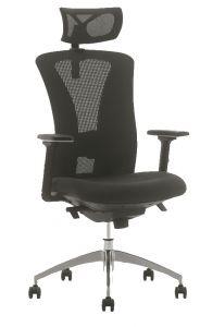 Beta Mesh Office Chair